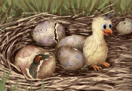 Hatching Quail